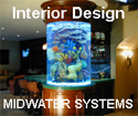 Custom Aquarium Interior Design Installation Service